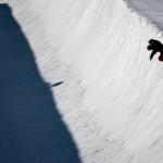 Snowboard Halfpipe Tricks